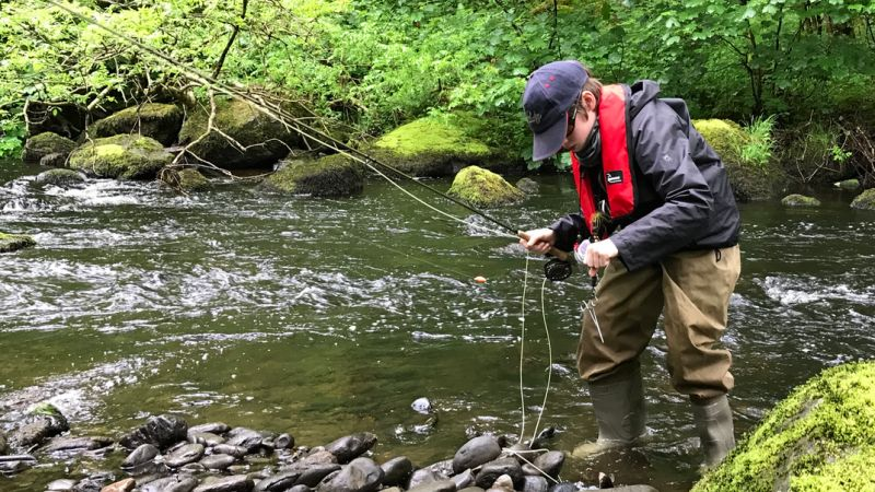 Shakespeare Agility Rise fly rod review