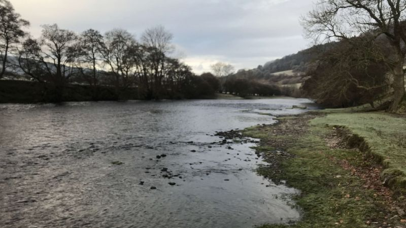 Fly fishing diary: December 2019