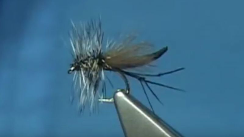 Tying Davie McPhail's Transformer Midge