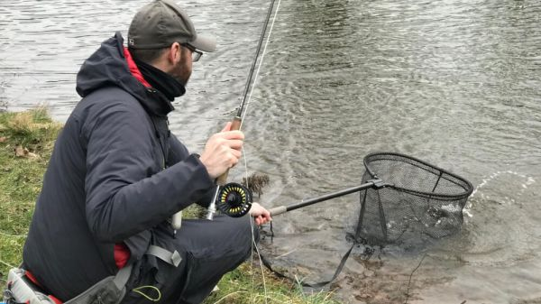 Fly fishing diary: January 2019