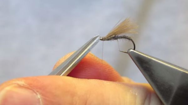 5 easy to tie CDC F fly patterns