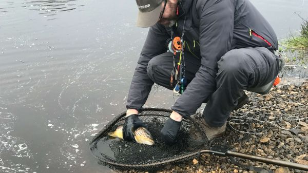 Fly fishing diary: January 2020