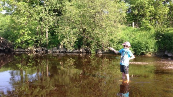 Fly fishing diary: June 2016